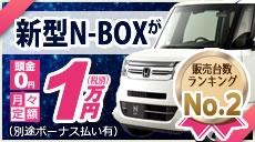 新型N-BOXが月々定額1万円